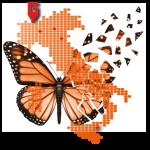 Logo del gruppo di Meeting Regionale G.I.BIS. Baveno