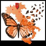 Logo del gruppo di Meeting Regionale G.I.BIS. Pacengo di Lazise