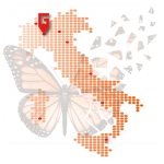 Logo del gruppo di Meeting Regionale G.I.BIS. Milano